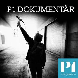P1 Dokumentär logo