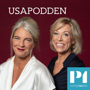 USApodden logo